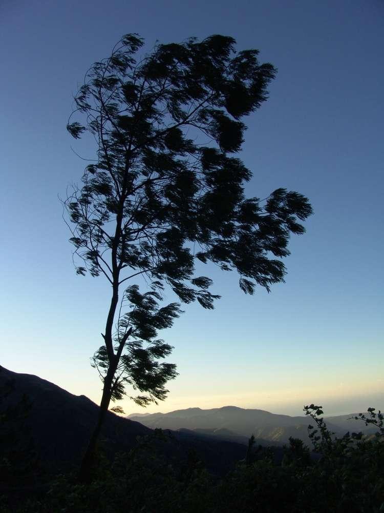 better sleep, jamaica, mountains