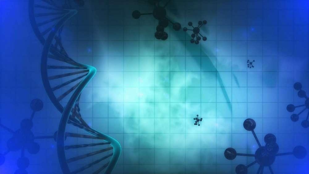 nutrigenomics, genetics