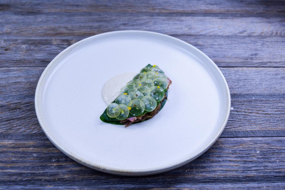 Instant Pot Braised Pork Recipe