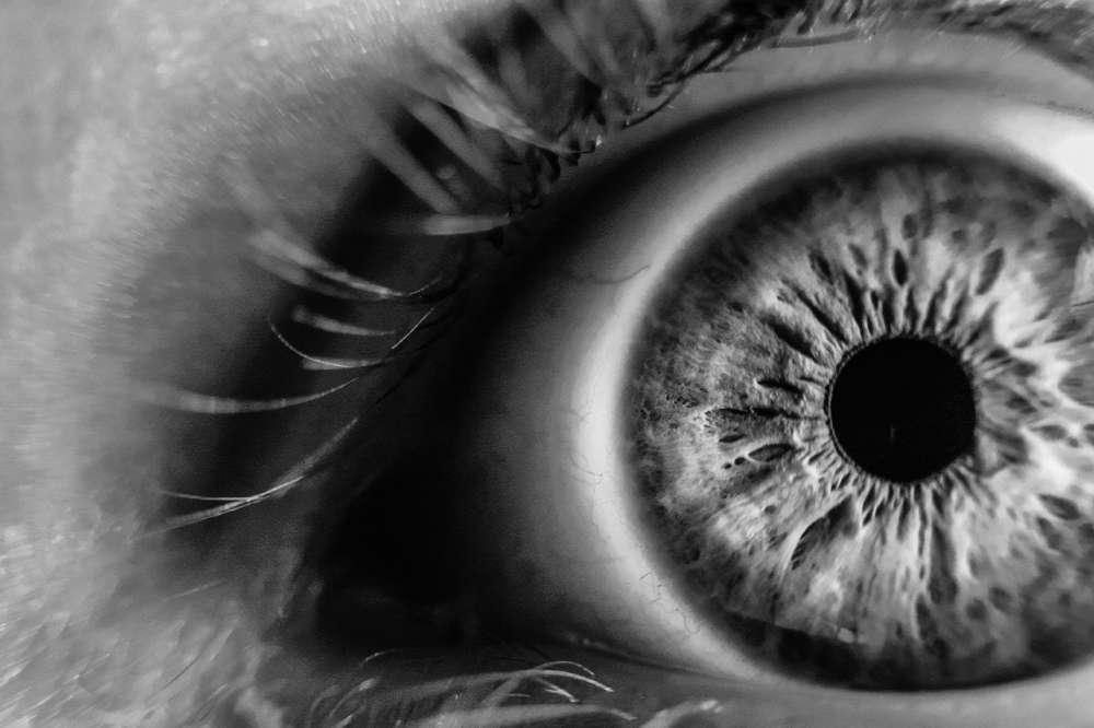 alzheimers, eyes, eye health, AMD