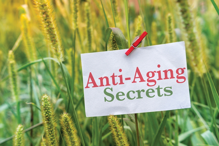 muscle loss, anti-aging secrets