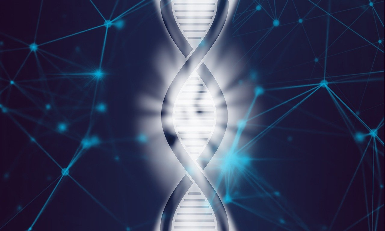 dna, personalized diet