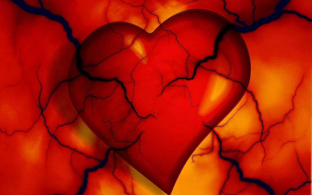 heart nutrients
