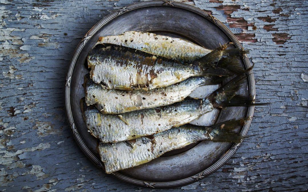 sardines, diabetes, risk for diabetes, omega-3